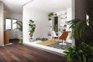 Penerapan Tanaman Hijau Tuk Hadirkan Suasana Sejuk Di Rumah